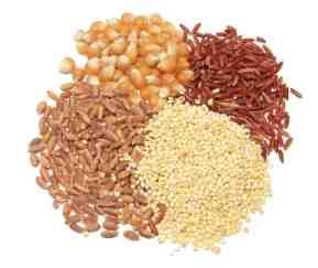 Whole Grain Foods List In Hindi