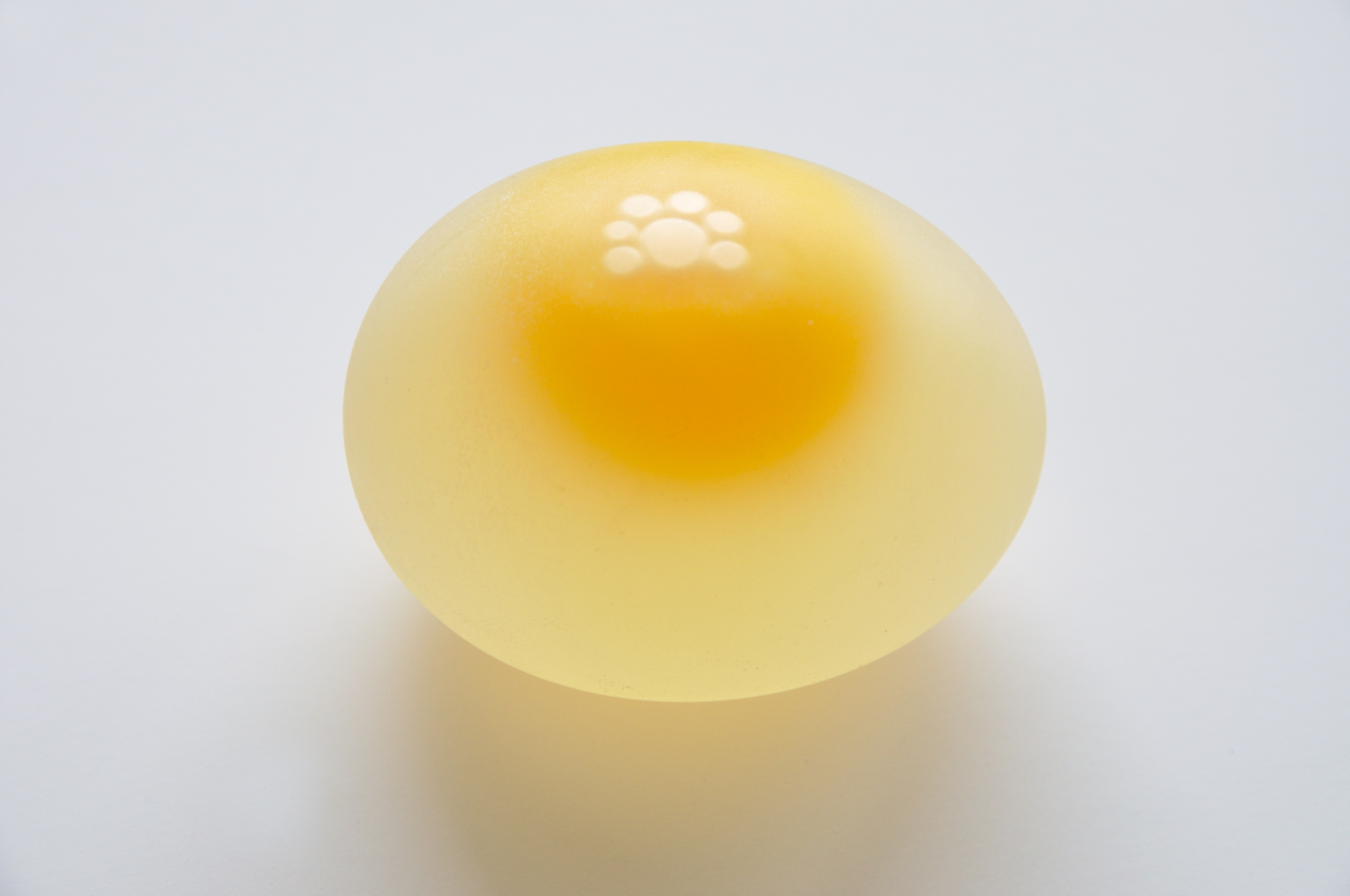 Can Dogs Eat Raw Duck Eggs