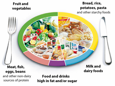 The eatwell plate percentages new health guide for Food wheel template