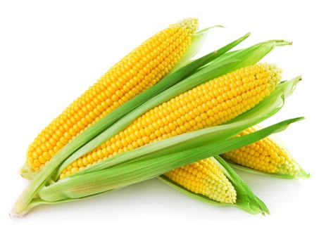 is corn a fruit vegetable or grain new health guide