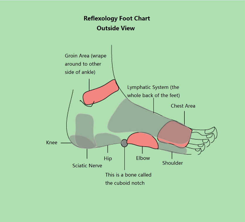 Reflexology Foot Chart | New Health Guide